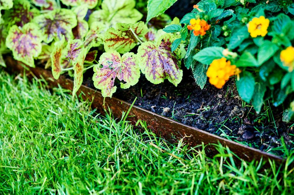 Blumenbeet mit Metallkante an Rasen