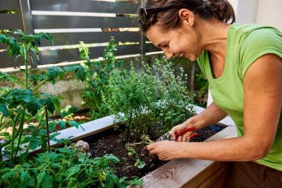 Gartenpflege an einem Hochbeet