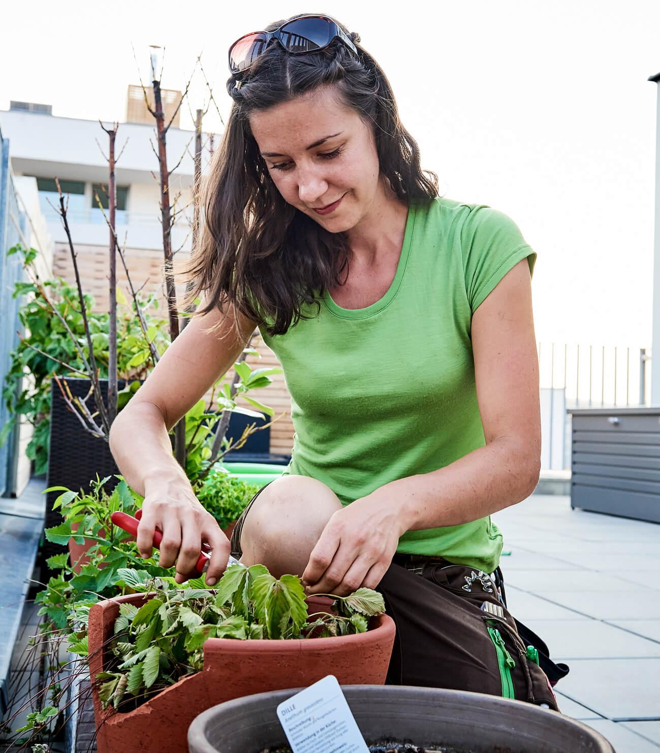 Miriam Miketta Gartenbauerin bei der Arbeit