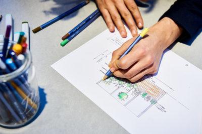 Gartenbau Entwurf Zeichnung bei TulpenBaum