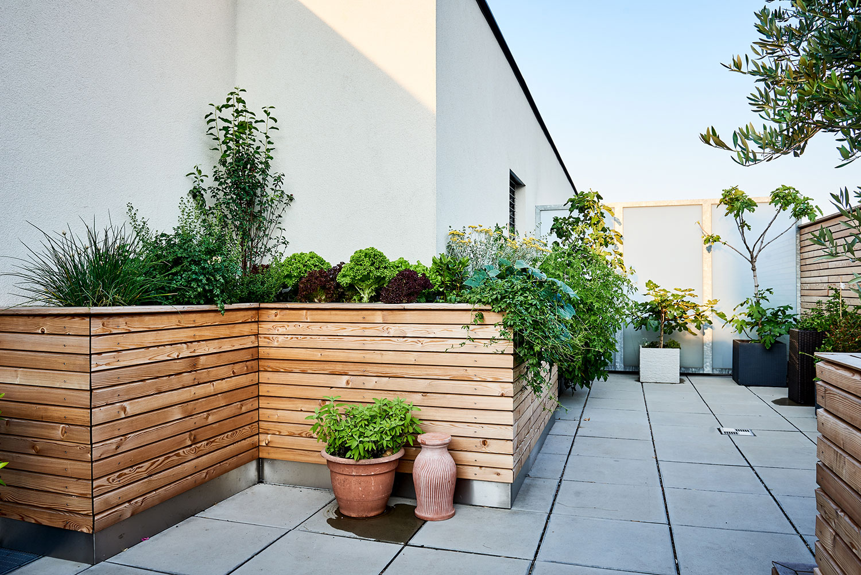 Begrünte Dachterrasse im Herzen Wiens mit verschiedenen Hochbeeten